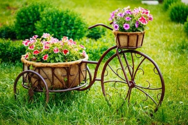 Garden and Outdoor Decor Resources