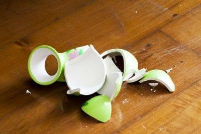 Airbnb Hosts Complain, Broken Vase